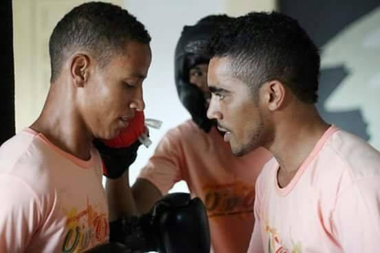 1 boxe (2)